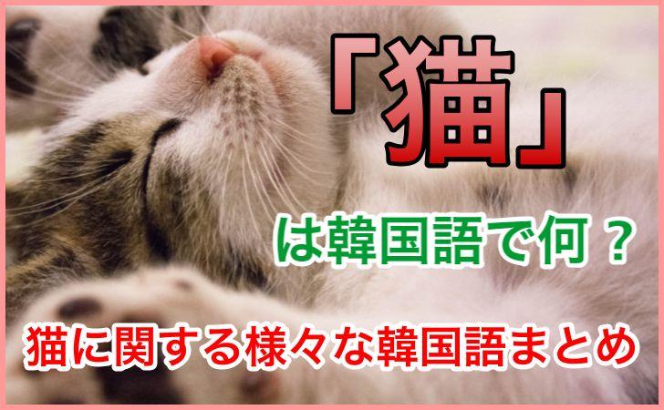 「猫」の韓国語