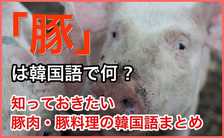 「豚」の韓国語