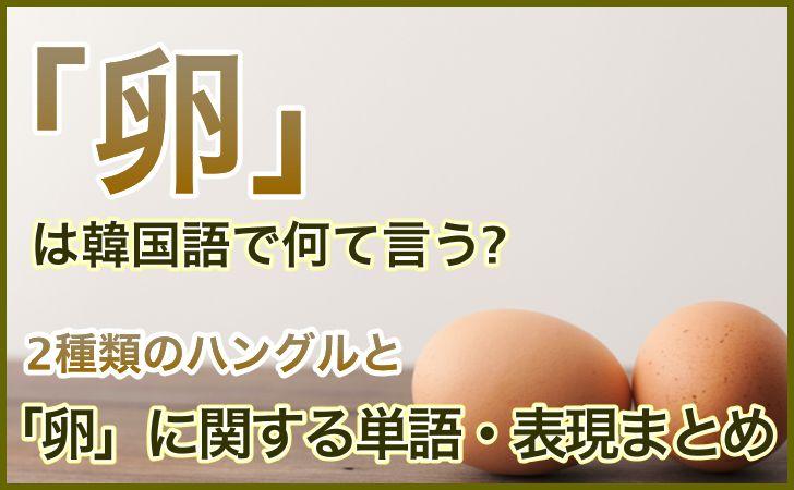 「卵」の韓国語