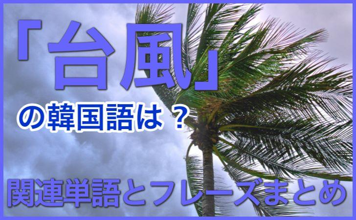 「台風」の韓国語