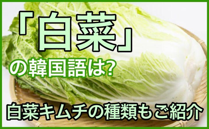 「白菜」の韓国語