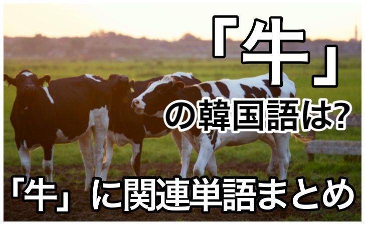 「牛」の韓国語