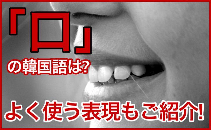 「口」の韓国語