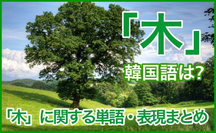 「木」の韓国語