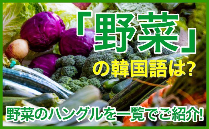 「野菜」の韓国語