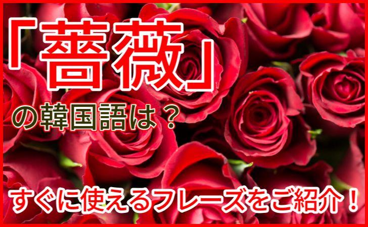 薔薇の韓国語